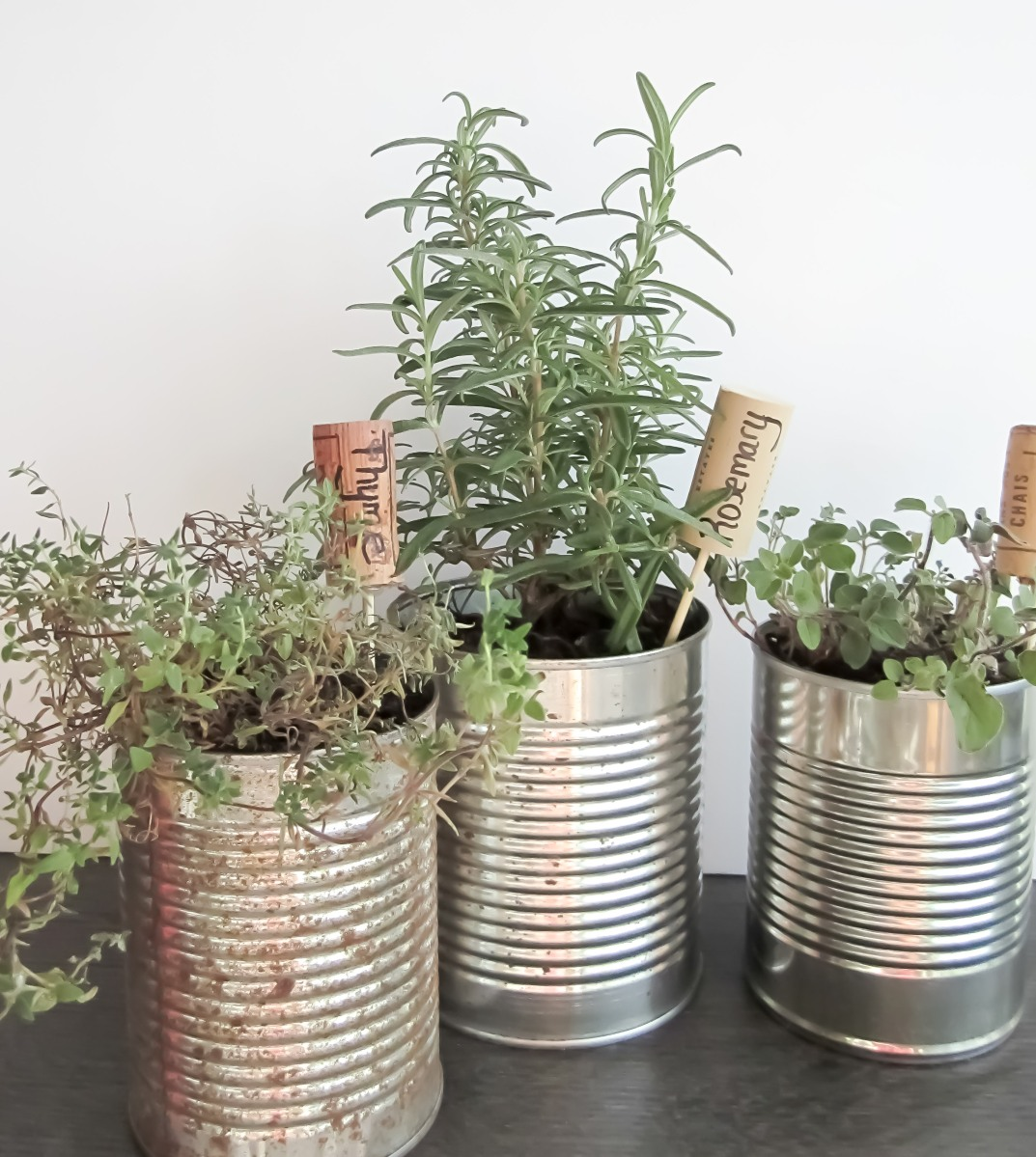 3 simple steps for your amazing indoor herb garden teal for Design indoor herb garden